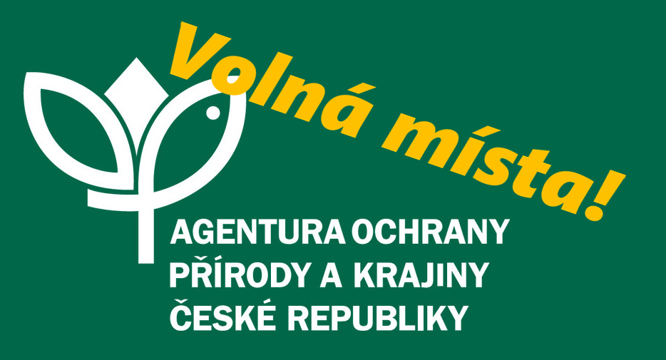 dbmokrady-cover-cz